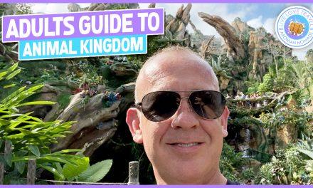 Adults Guide To Animal Kingdom at Walt Disney World