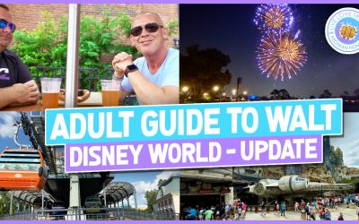 Adults Guide to Walt Disney World – November 2019 Update
