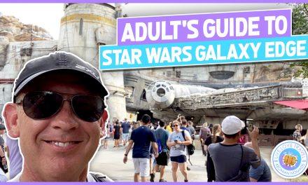 Adults Guide To Star Wars Galaxy Edge at Walt Disney World